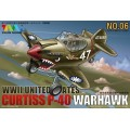 Cute U.S P-40 Warhawk Fighter
